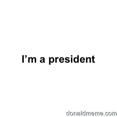 Donald trump meme