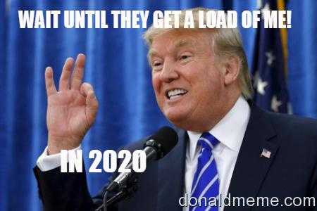Donald Wins 2020