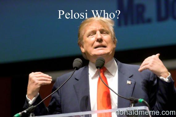 Pelosi Who?