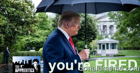 Donald? YOU ARE FIRED